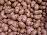 Chocolade cashewnoten melk