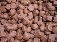 Chocolade gember