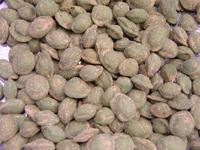 Wasabi pinda's kopen
